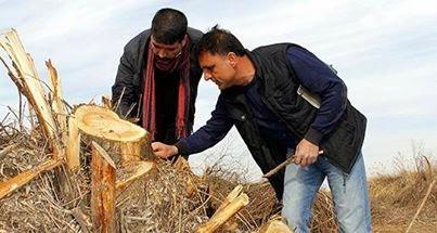 Hevsel'de kesimler durdu, ağaçlandırma yapılacak