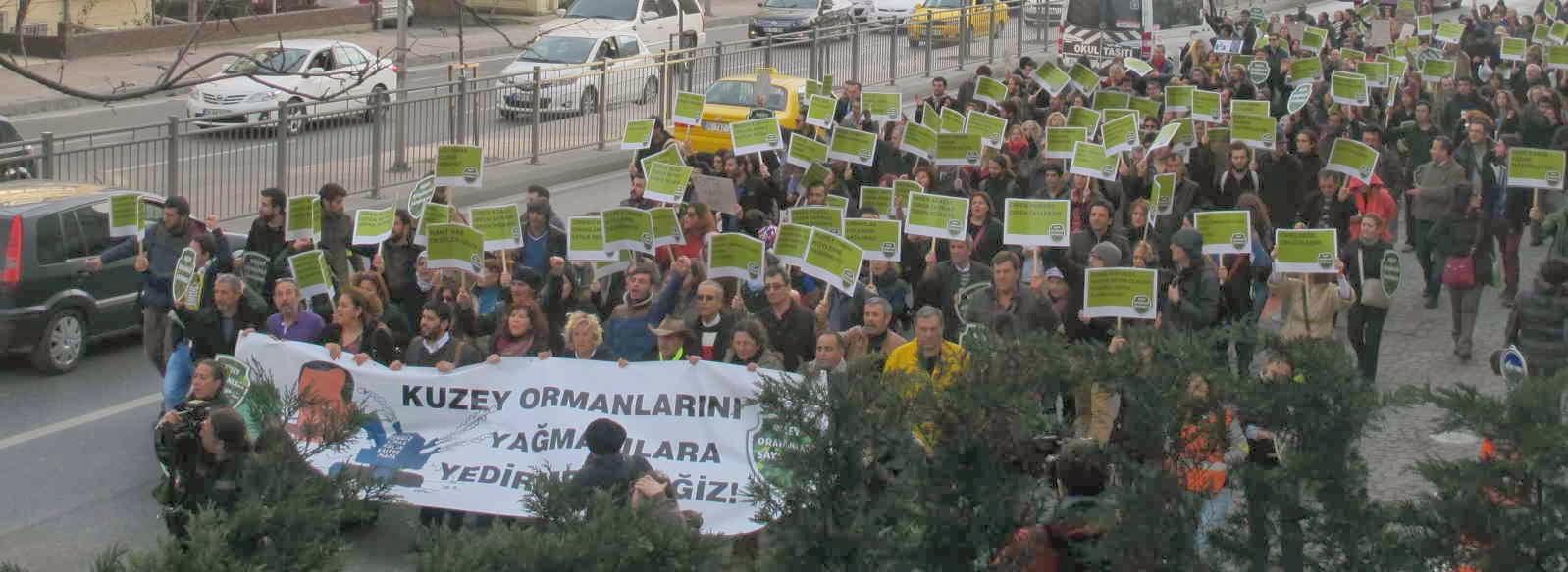 Kuzey Ormanlarını ve Köylerini Sizlere Yedirmeyeceğiz! 8 Şubat 2014 Eylemimiz Ardından