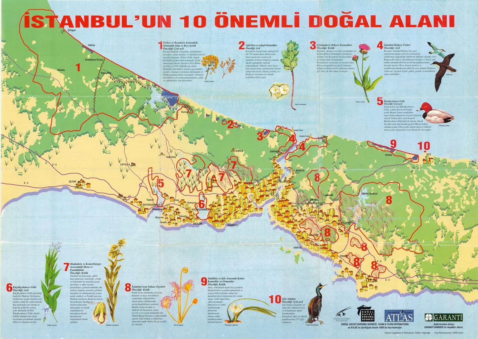 İstanbul'un 10 Önemli Doğal Alanı