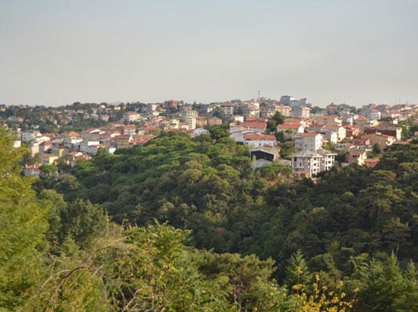 Soylulaşma yolundaki Tarabya'da Boğaz'ın önemli yeşil alanlarından Tarabya Korusu imara açılıyor
