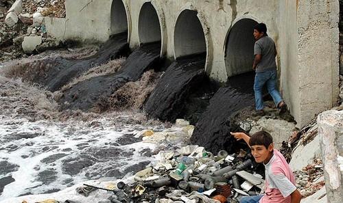 """Ergene Nehri için """"Doğa Katliamına Hayır"""" eylemi"""