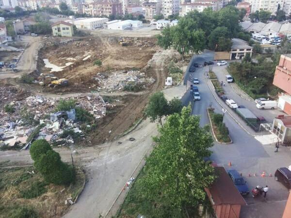 Göztepe'de bir gecede onlarca ağacı kestiler