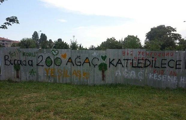 Ataköy, Orman Yolu'nda Kesilecek Ağaçları İçin Sanatla Direniyor