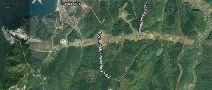 Kuzey Ormanları'nın katliamı artık uydudan görünüyor