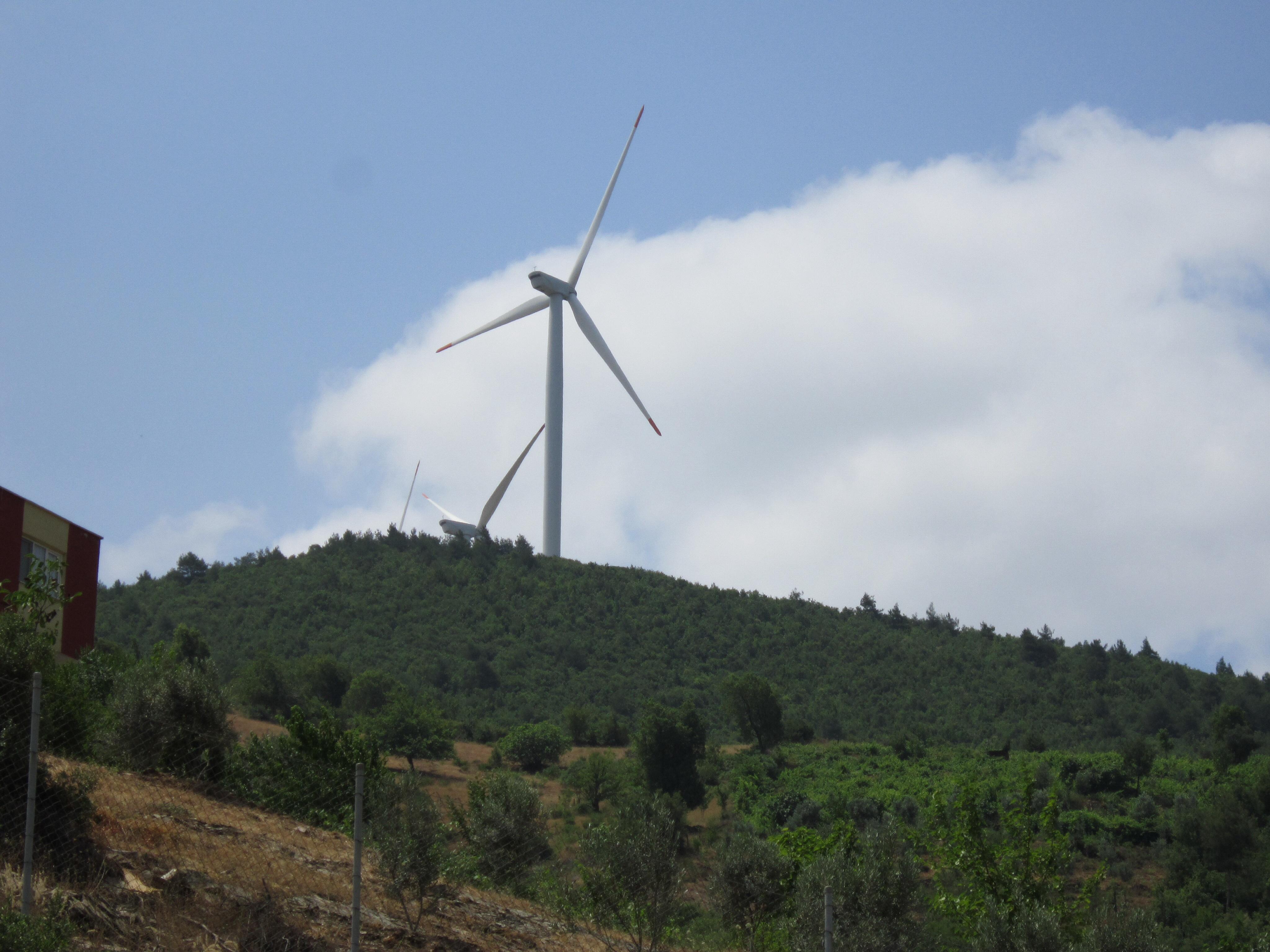 İzmir'de RES için plan değişti: Orman delinecek!