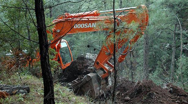 AKP'nin Soma düzenlemesiyle orman alanları yapılaşmaya açıldı