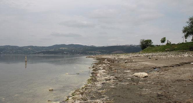 Özdemir: 'Sanayi amaçlı su çekimi durdurulsun'