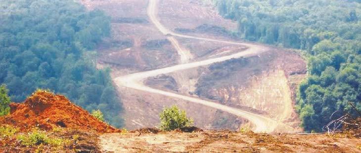 Çevre Bakanı'na göre 3. Köprü 'çevre için faydalı'