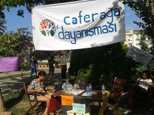 Moda Gezi Bostanı'nda Kiraz Mevsimi