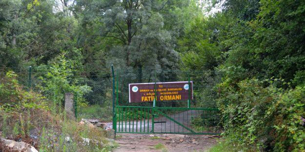 Fatih Ormanı projesine büyük tepki