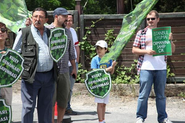 'Park Orman projesi için kaç ağaç kesilecek?'