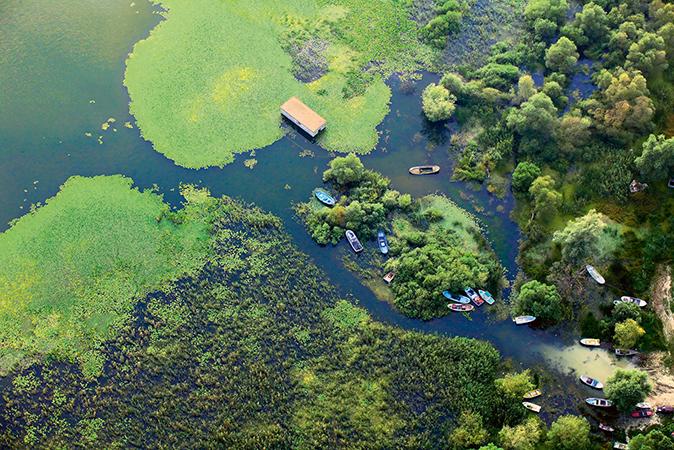 Kuzey Ormanları yok olursa, su kaynakları yok olur. 3. havalimanı projesi iptal edilmeli