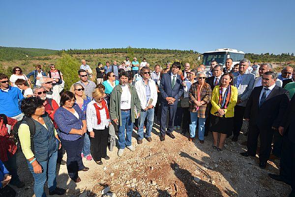 Foça Ilıpınar'daki ağaç katliamına dur denildi