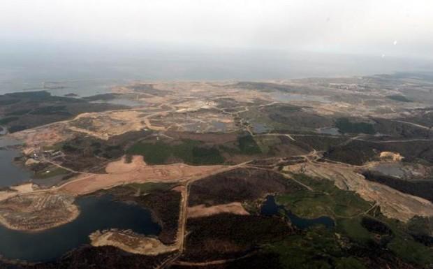 'Kuzey Ormanlarının Azalması, İstanbul'da Hava Kirliliğini Arttıracak'