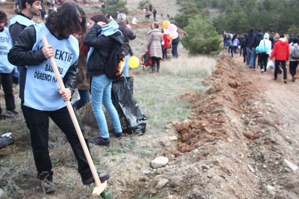 Gökçek yıkıyor, üniversiteliler ODTÜ'ye ağaç dikiyor