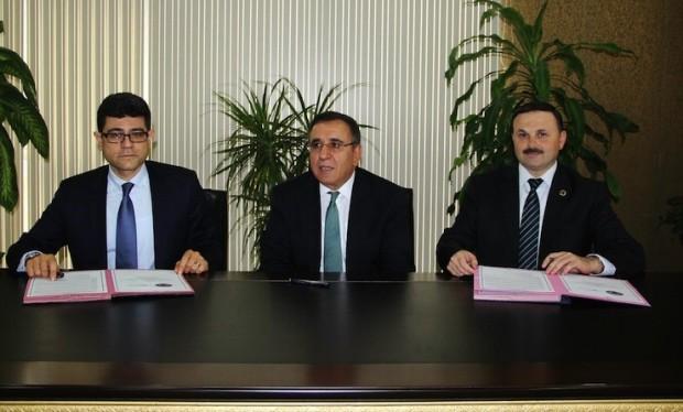 Yırca'da hukuksuzca 6 bin ağaç kesen Kolin 60 bin fidan dikecek; amaç 'halkı bilinçlendirmek'!