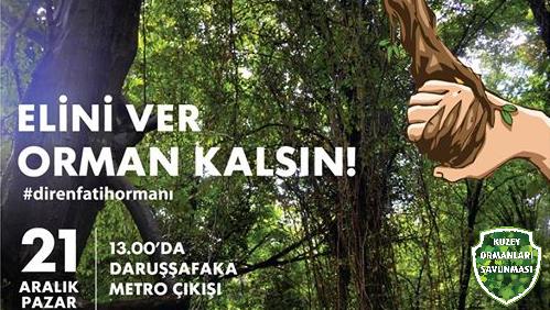 21 Aralık Pazar 13.00'da Fatih Ormanı'nı Savunmaya!