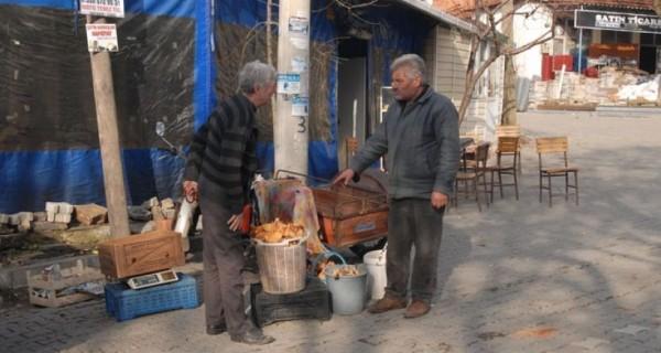 Organik köyün RES'e karşı hukuk zaferi