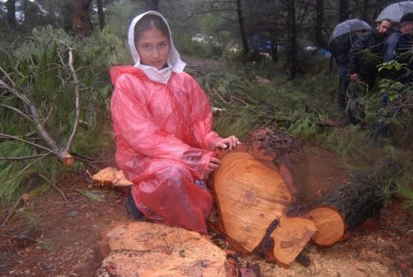 Urla'daki ağaç kesimi, köylülerin direnişi ve hava muhalefetine takıldı, nöbet başladı! !