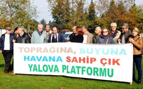 Yalova Platformu: Yaşanan katliam yalnızca kesilen 158 ağaçtan ibaret değil!