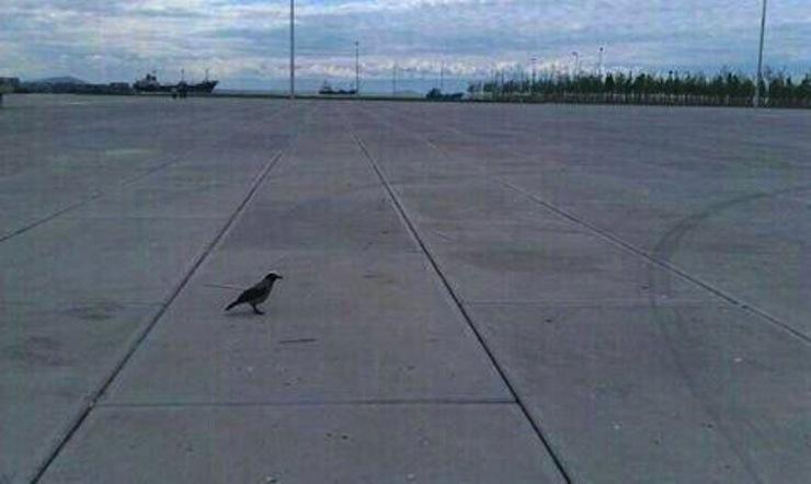 'Şakacı' valilik: Doğa mitingi için betonla kaplı Yenikapı ve Maltepe adres gösterildi