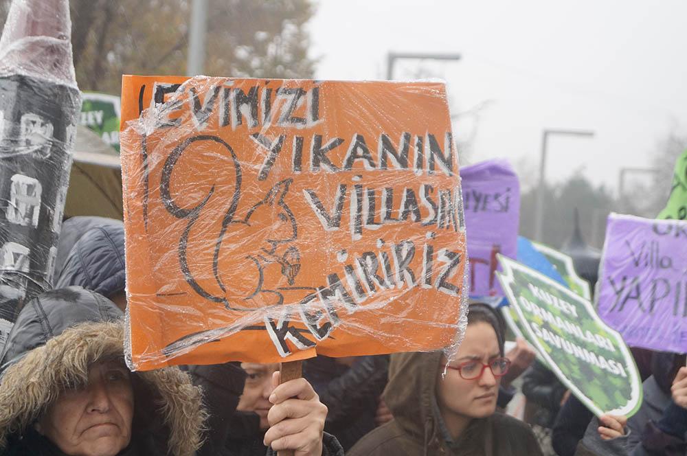 Zekeriyaköy'deki doğa katliamına dur de!