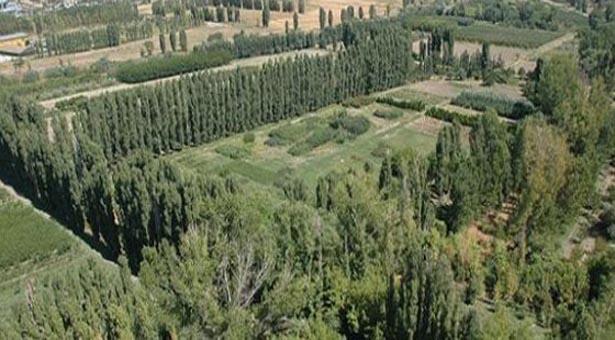 Ankara, AOÇ arazisinde botanik bahane rant şahane