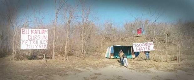 Ordu'da 7300 meşenin kesildiği Kumru'da taşocağına karşı çadır nöbeti başladı
