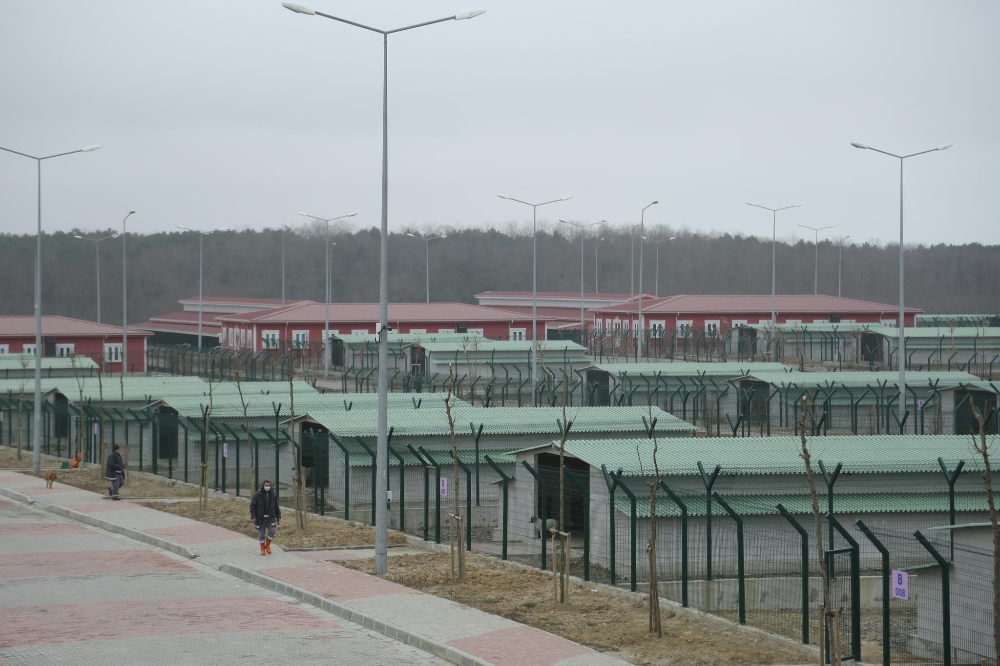 Kısırkaya: Barınak mı toplama kampı mı?