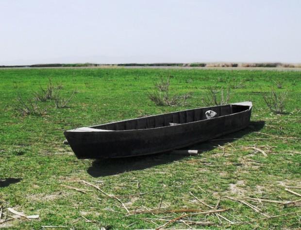 Türkiye'nin sulak alanlarının yarısı yok oldu! 2023'te bir bardak suya muhtaç kalabiliriz…