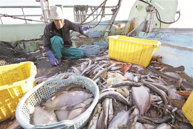 """Nükleer santral mağduru Fukuşima'nın balıkçıları şokta: Radyoaktif sızıntıyı gizleyen """"TEPCO güvenimizi suistimal etti!"""""""