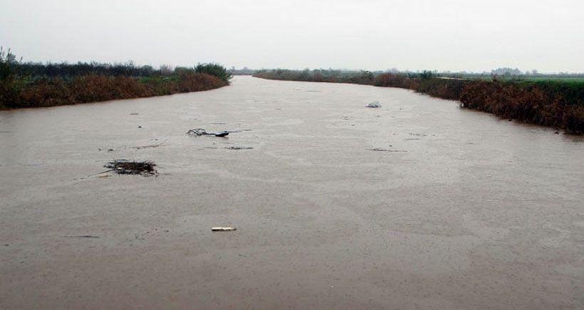 Menderes Nehri ölüm saçıyor