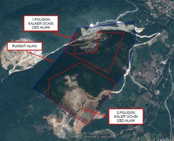 Mahkeme, Yalova'daki ağaç katliamı konusunda Bakanlık'tan ÇED savunması istedi