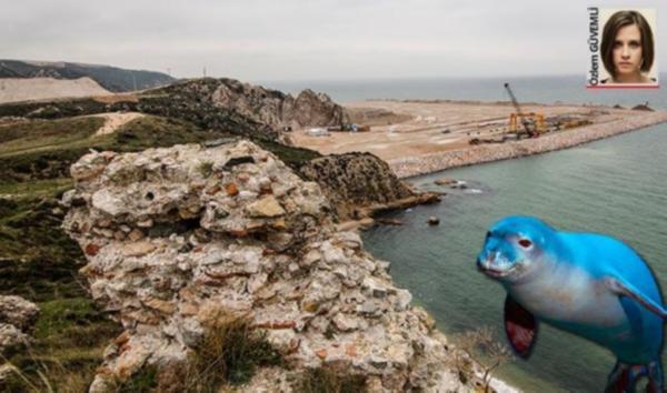 Diren Çanakkale! Cengiz, Akdeniz foklarına termik santrali yeterli görmedi, hazır beton santralleri kurmak istiyor!