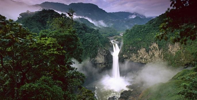 Amazon ormanları küresel ısınmaya yenilmek üzere