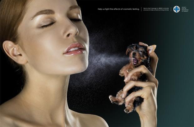 Hayvanlarda denenen kozmetikler artık Avrupa Birliği'ne giremeyecek!