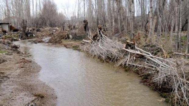 Afyonkarahisar, İhsaniye'de ağaç katliamı