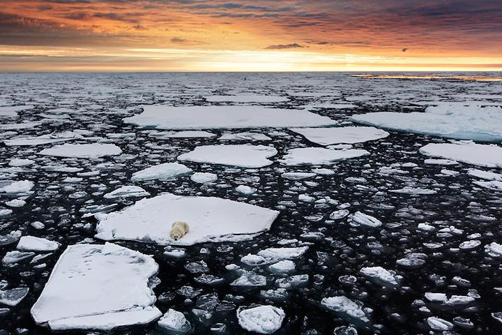 'Küresel ısınmaya inanmıyorum' diyenleri hüzünlendirecek fotoğraflar