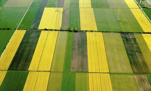 Onarıcı tarıma ihtiyacımız var, jeo-mühendisliğe değil