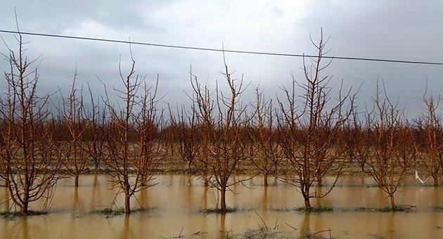 Seller doğal değil, insani felaket!