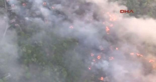 Orman yangını Çernobil santralına yaklaştı!