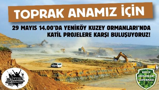 29 Mayıs'ta İstanbul'un Katili Mega Projelere Karşı Kuzey Ormanları'nda, Yeniköy'de Buluşuyoruz!