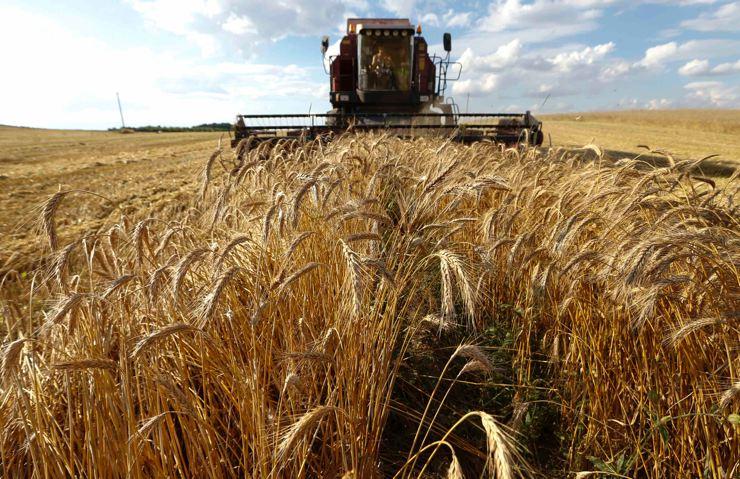 Bu gurur AKP'nin: Son 10 yılda Belçika büyüklüğünde tarım arazisi kaybedildi
