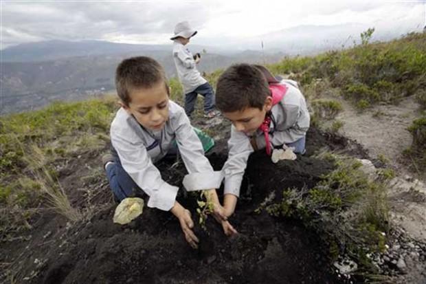Ekvador'da bir günde 650 bin ağaç dikilerek yeni bir dünya rekoru kırıldı