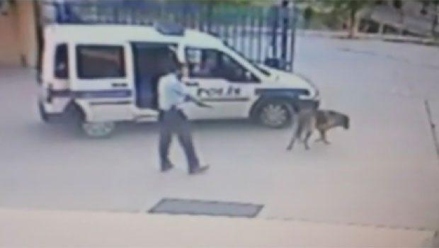 Komiser Yardımcısı karakol bahçesinde köpek vurdu