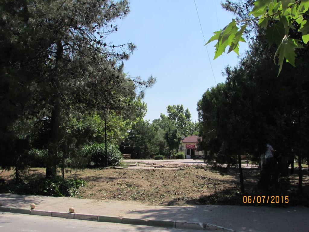 Nilüfer Belediyesi'nden yol bahaneli ağaç kesimi