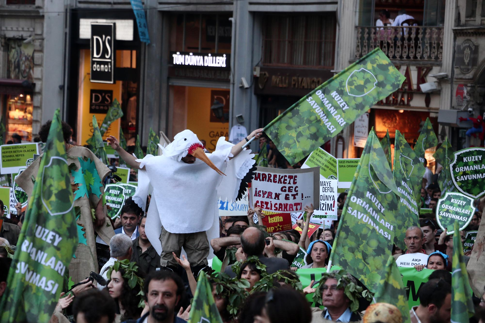 The Children of Gezi: Defending the Northern Forests in Istanbul