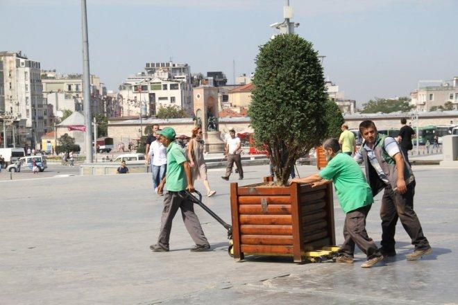 Portatif ağaç, portatif meydan
