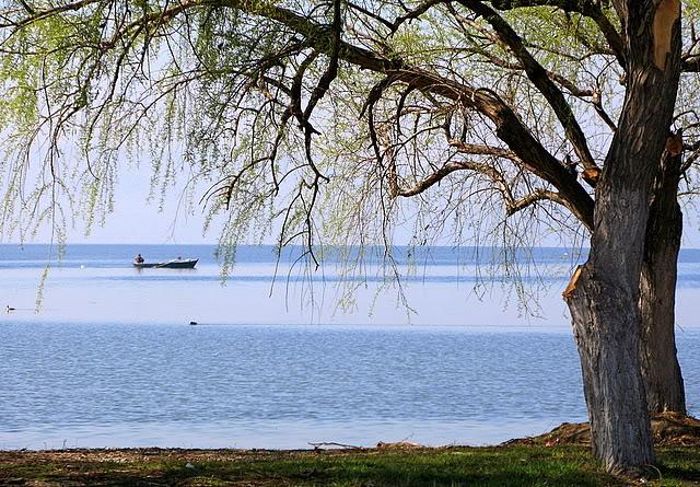 Yargı İznik Gölünü Bitirecek Proje'ye Dur Dedi