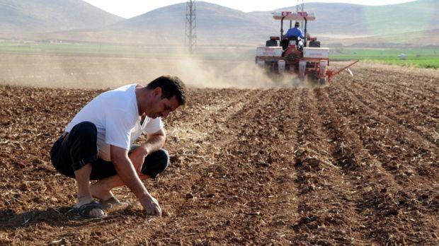 Tarım hızla kan kaybediyor: 600 bin çiftçi üretimden çekildi!